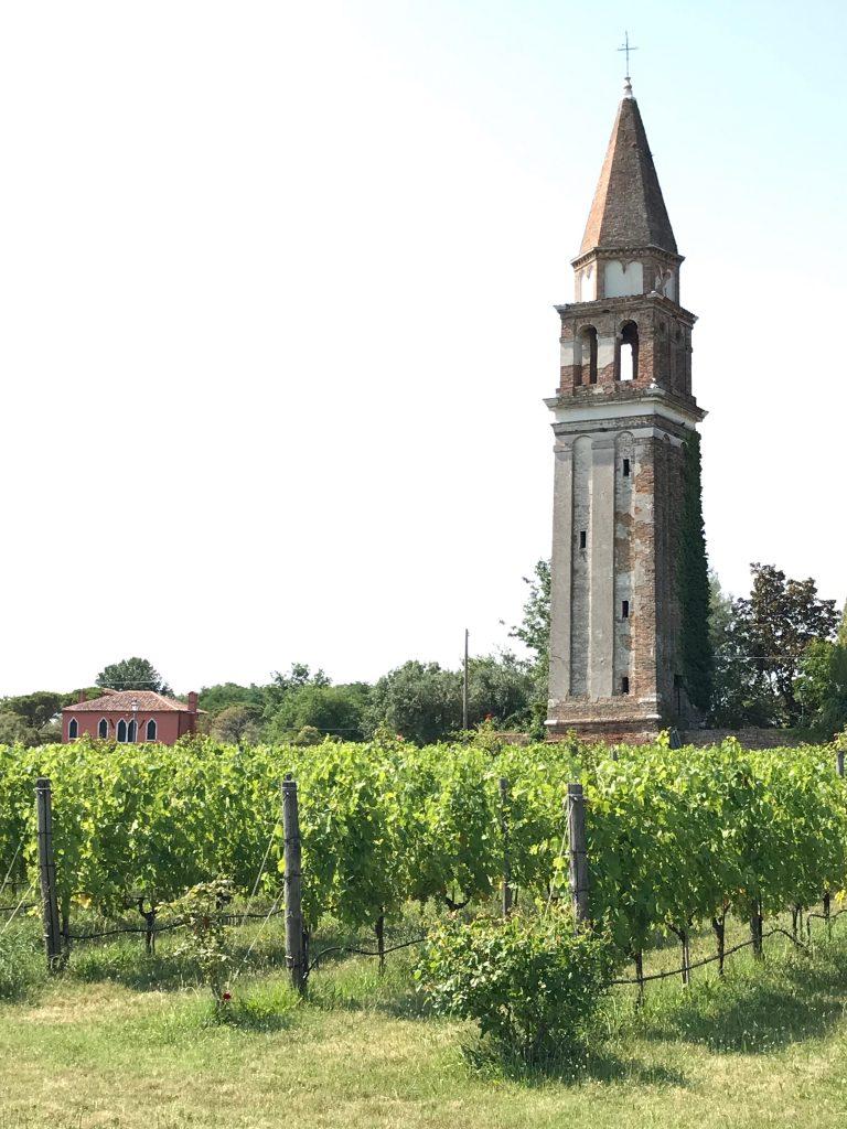 santa caterina bell tower on the Venissa wine estate