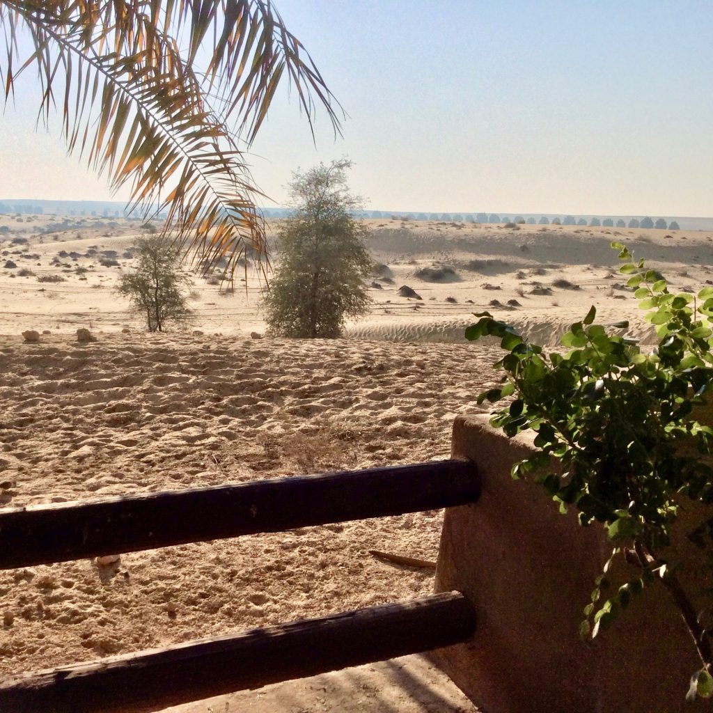 view of the desert from Bab al shams