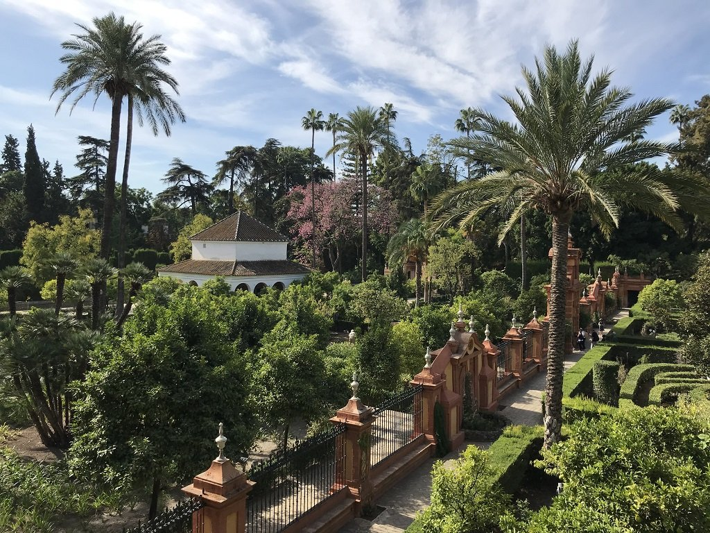 Aerial view of the palm trees and buildings in the Real Alcazar Seville