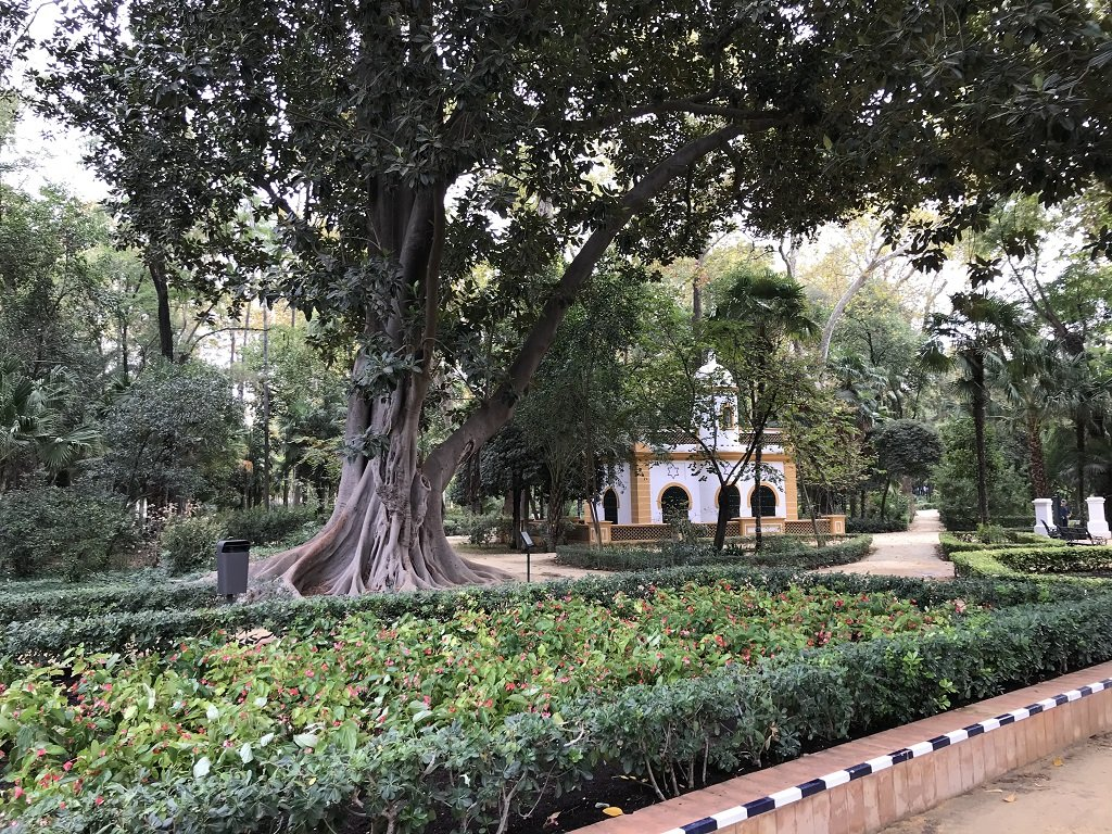 Mature trees, flower beds and a moorish inspired structure with the Maria Luisa Park