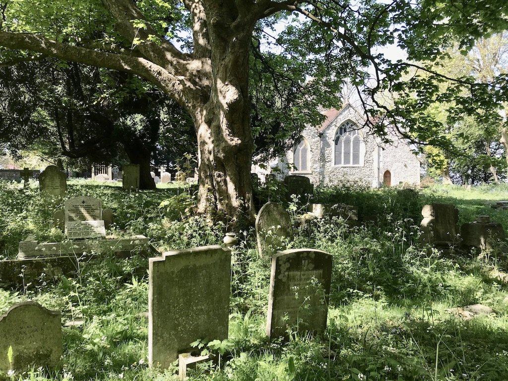Church Graveyard next to Oak tree