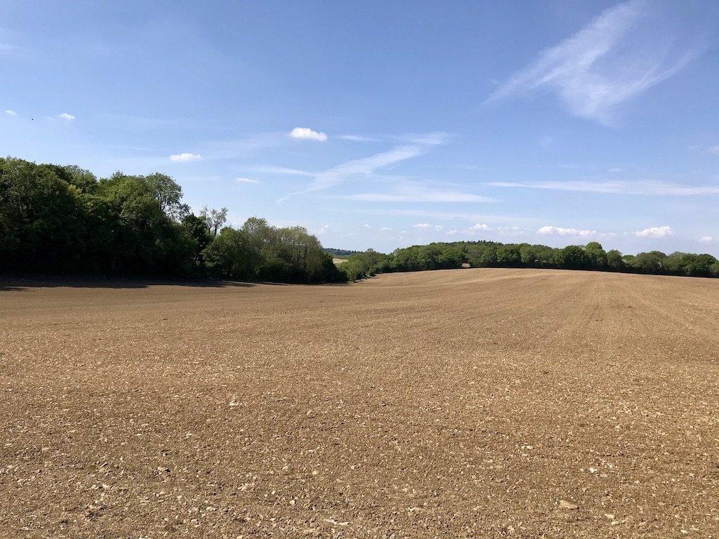 a brown field