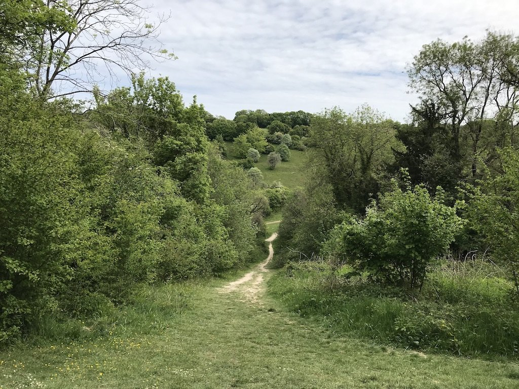 A pathway leading down a steep hill