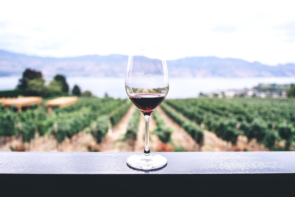 a glass of red wine on a wall with vineyards in the distance