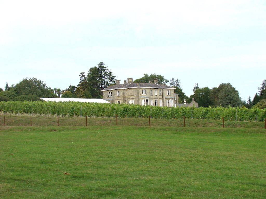Manor House and Vineyards