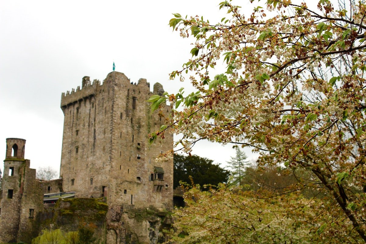 A view of Blarney Castle and tower