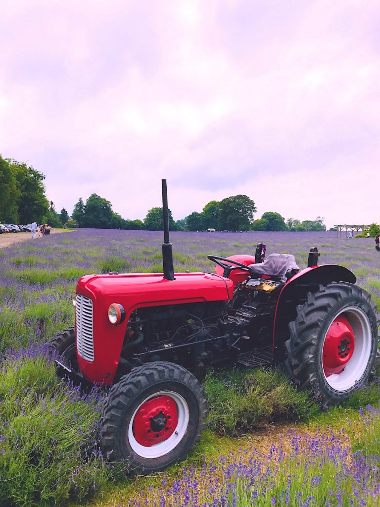 A red tractor used as a prop for photos