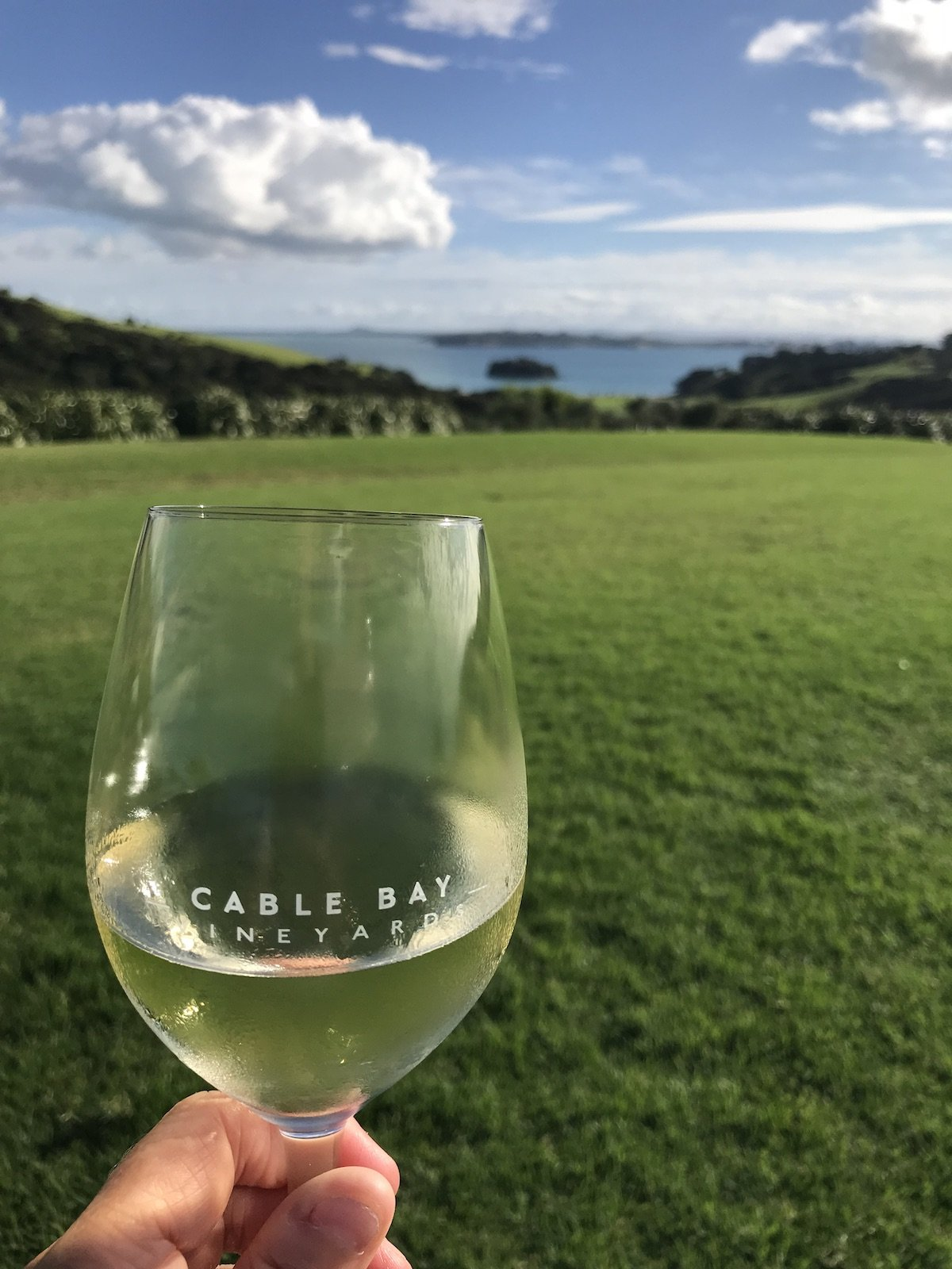 wine glass etched with cable bay