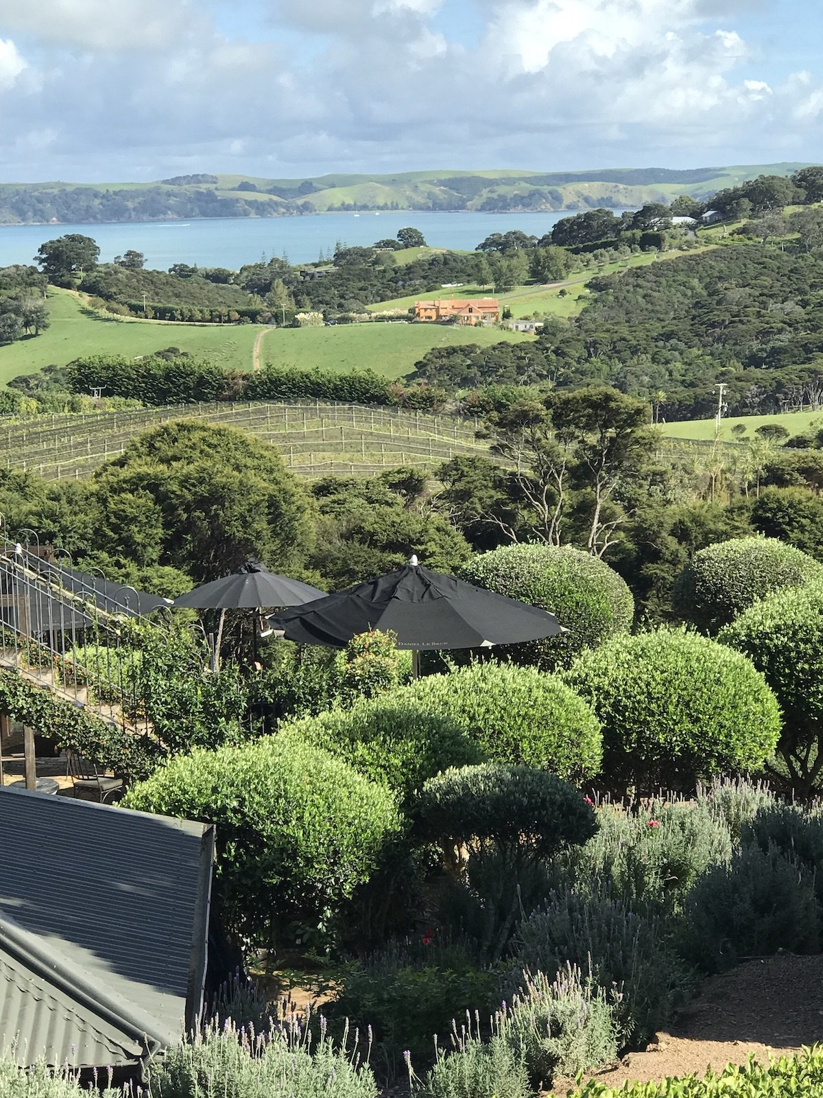 view to sea from Mudbrick Restaurant