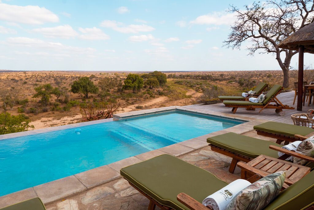 The swimming pool at a luxury safari camp with green recliners around it in the middle of the South African bush