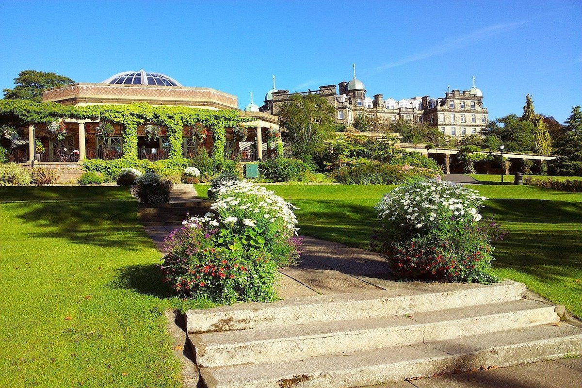 Beautiful Yorkshire Gardens in Harrogate with a pergola covered in vines and formal lawns leading to steps covered with white flowers.