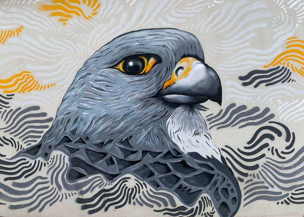 Grey bird painted as a mural on a wall