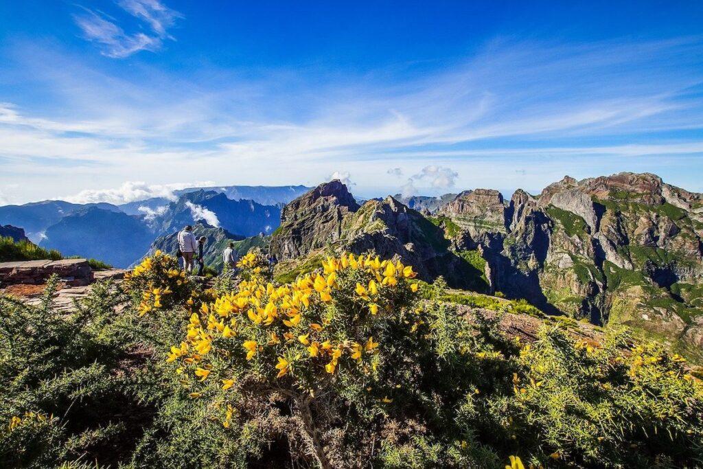 Levada Walks in Madeira Portugal