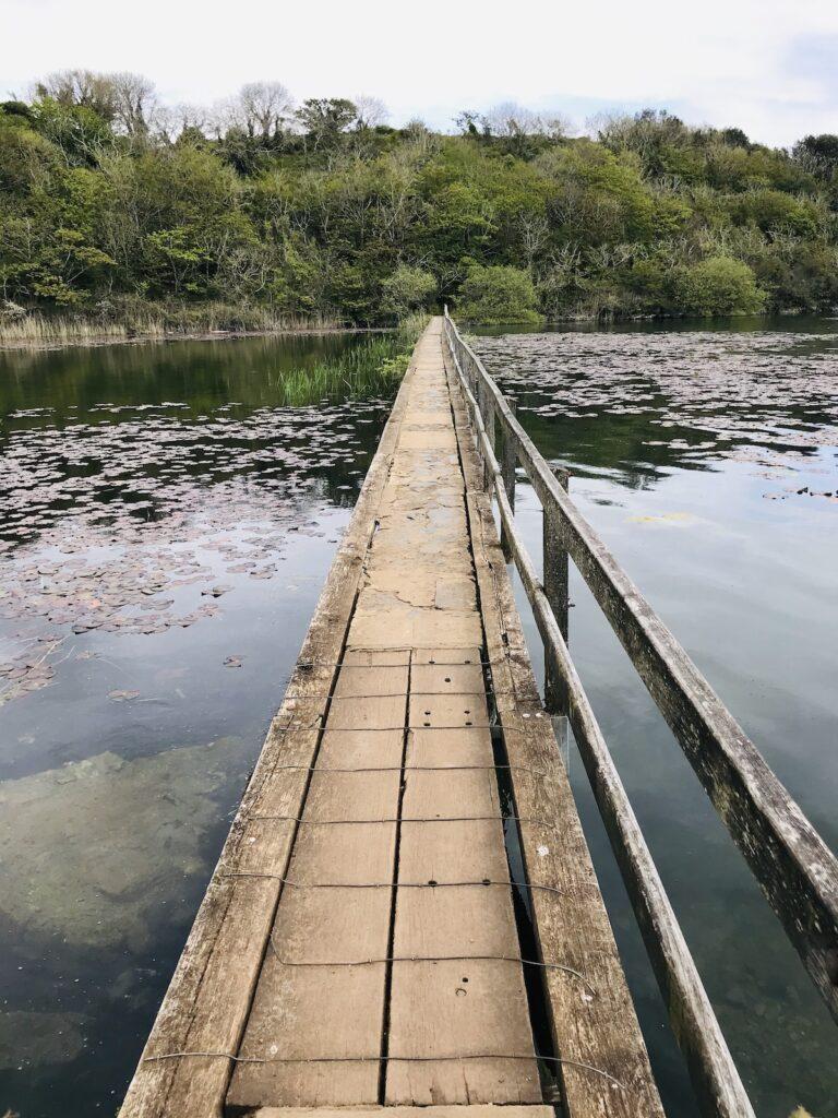 Wooden bridge leading across the pond