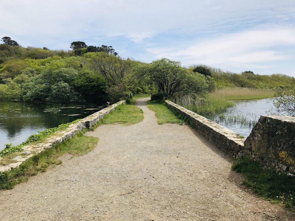 Grassy Bridge