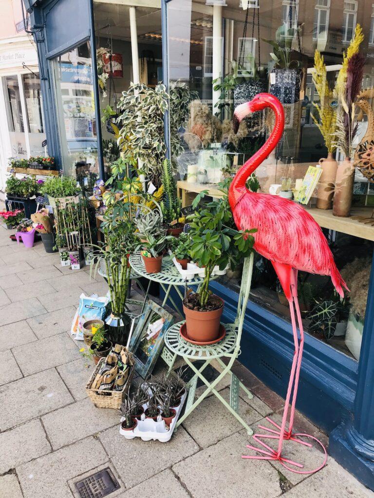 a pink flamingo model outside a flower shop in Faversham