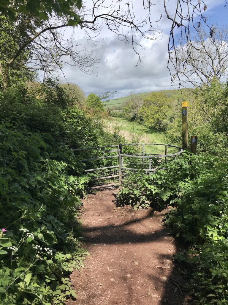 A country pathway leading to a turnstile in Laugharne
