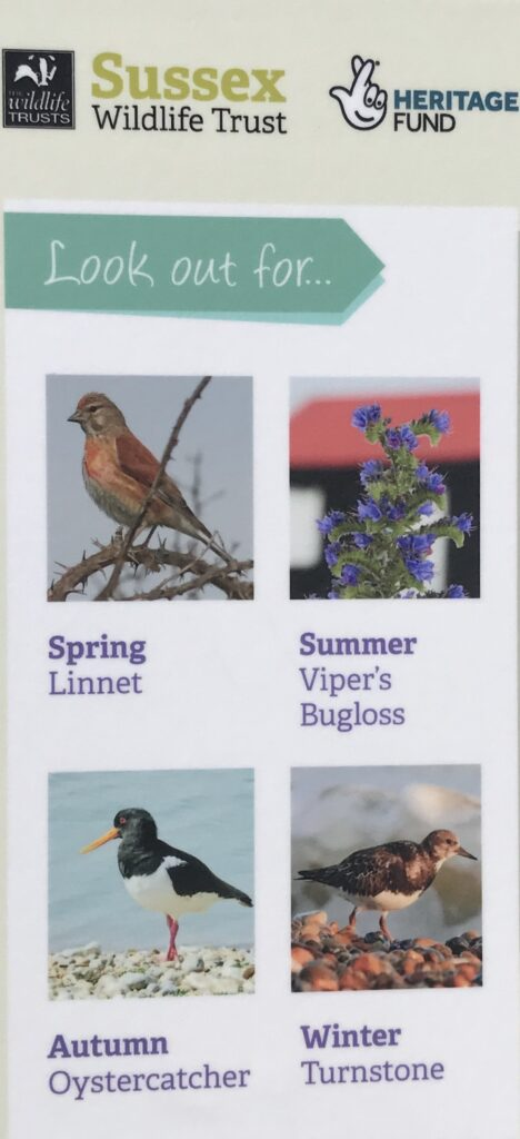 A sign for spotting birds