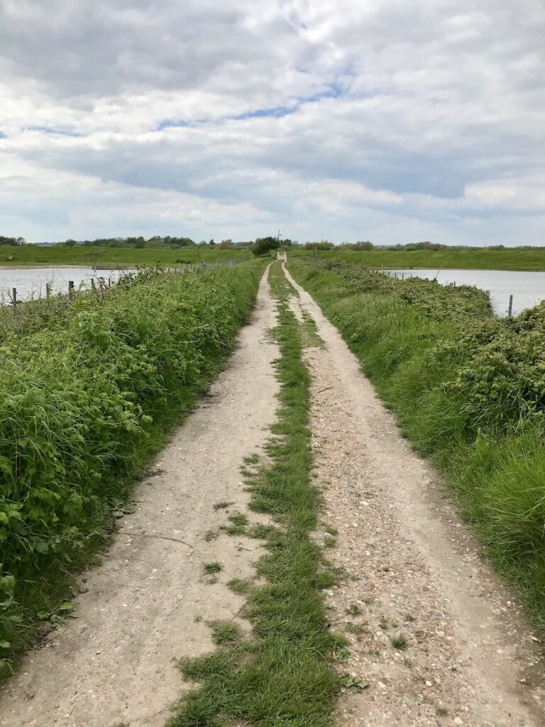 Long track through the Rye Harbour Nature Reserve