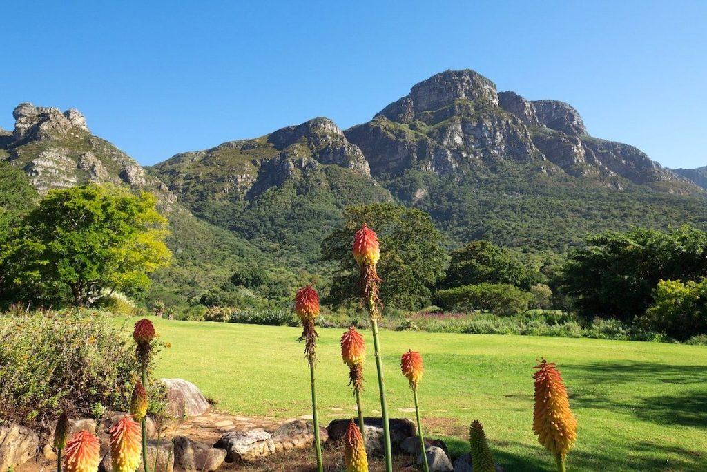 kirstenbosch-botanical-garden-Cape-Town