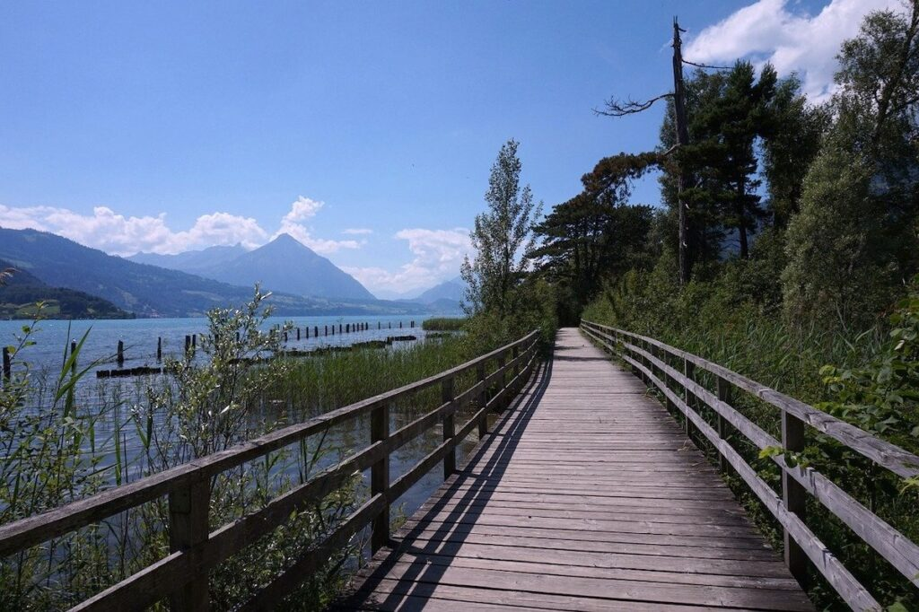 a boardwalk next to the blue waters of Lake Thun