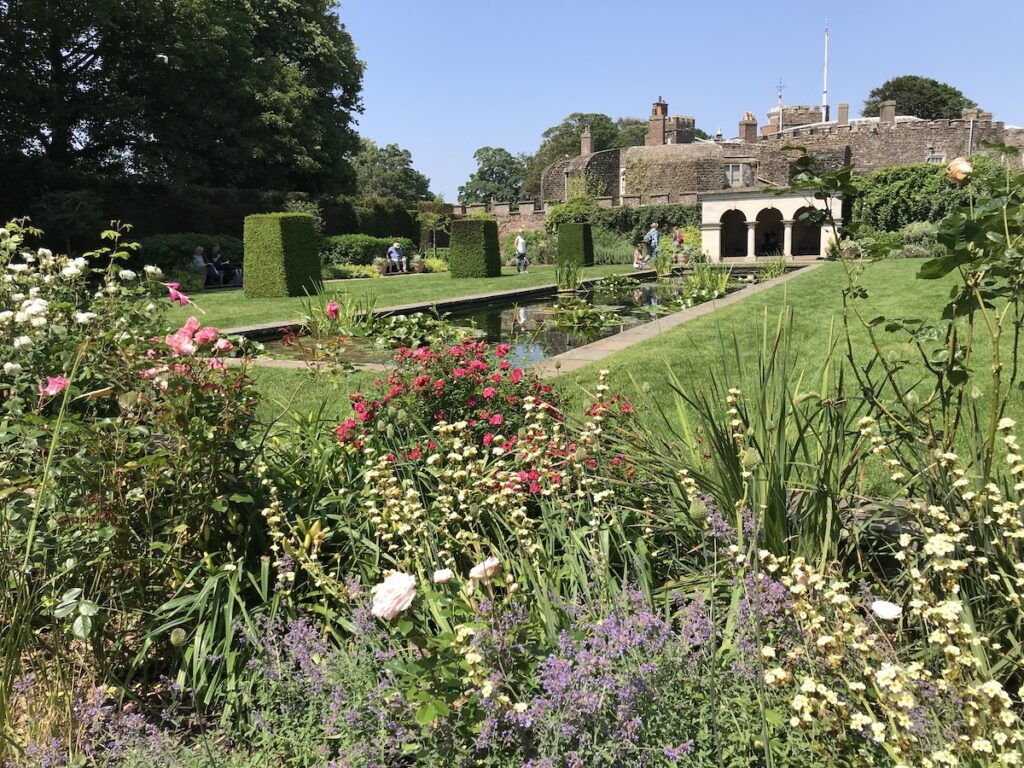 Flowers and plants in the Queen Mothers garden at Walmer Castle