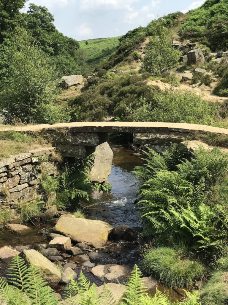 Bronte Waterfall Bridge