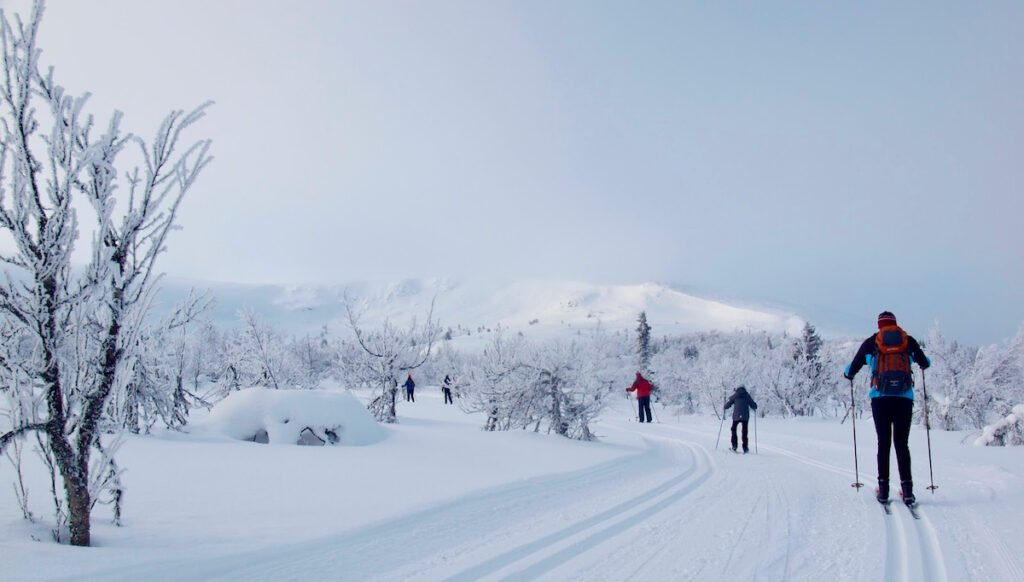 2 people skiing