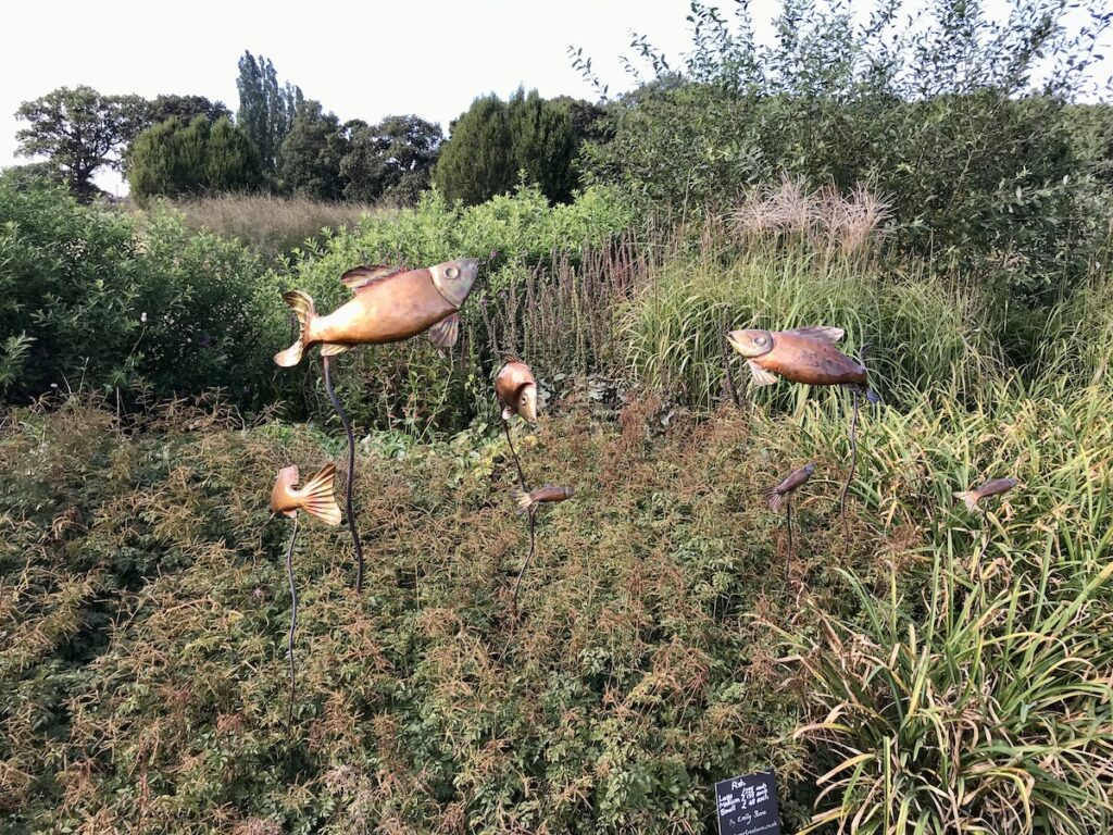 Metal fish sculptures in a plant border