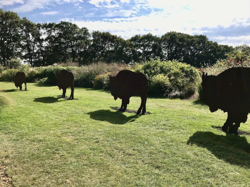 Bison Sculptures in the garden